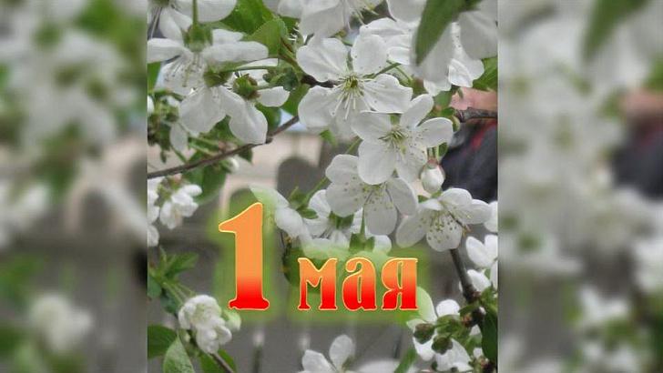 Поздравление председателя Волгоградской областной Думы Александра Блошкина с праздником Весны и Труда