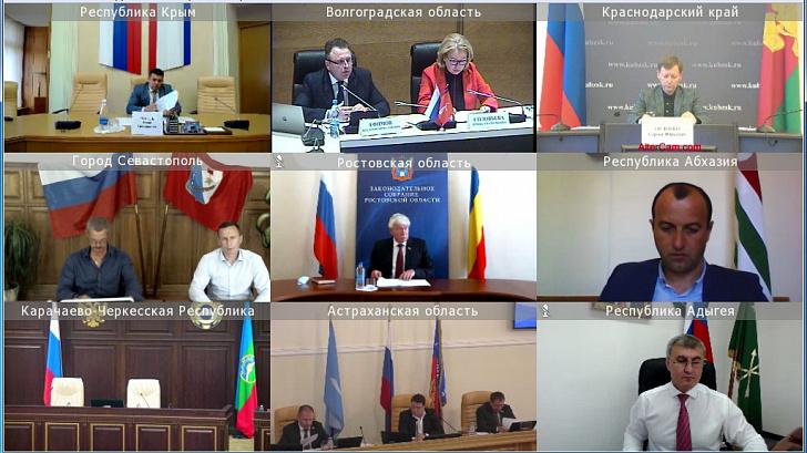 Законодатели Юга России обсудили вопросы совершенствования организации работы с бездомными животными