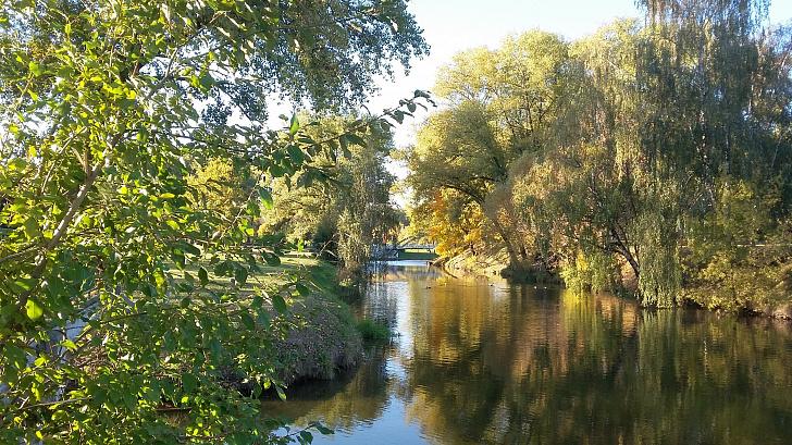 В Волгоградской области подвели итоги экологического конкурса среди школьников